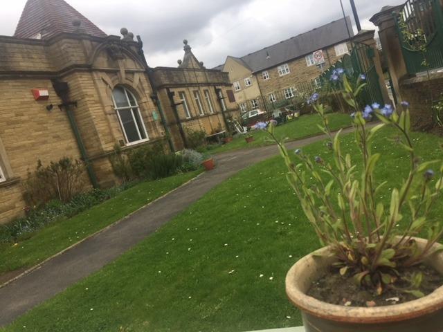 bramley baths community gardens 2